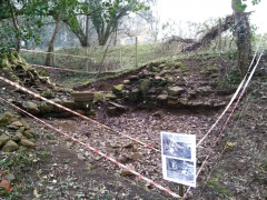 Archaeology at Stars & Snowdrops 2015